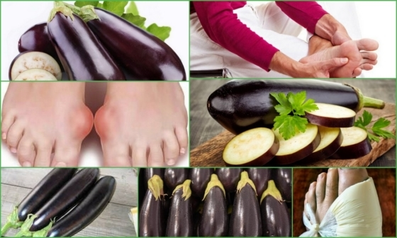 Редиска при подагре: можно есть или нет, какое влияние на организм оказывает овощ, существует ли замена продукту?