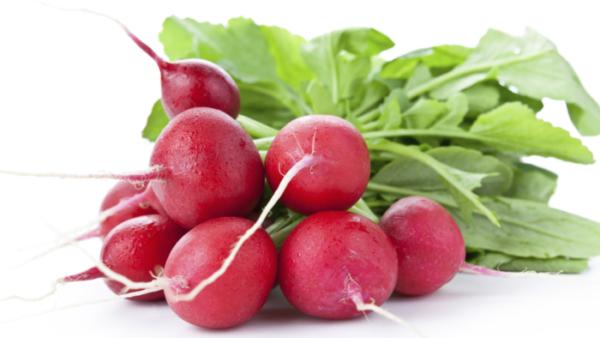 Лучшие сорта редиса для открытого грунта, теплицы и домашних условий:  какие самые хорошие семена раннего, среднеспелого и позднего овоща?