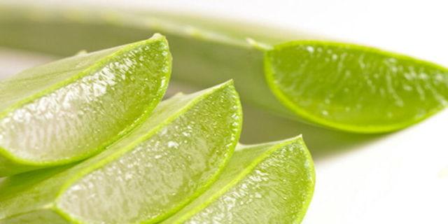 Можно ли капать алоэ в нос грудничку: как применять сок растения при насморке у детей до года, есть ли противопоказания по использованию для новорожденных?