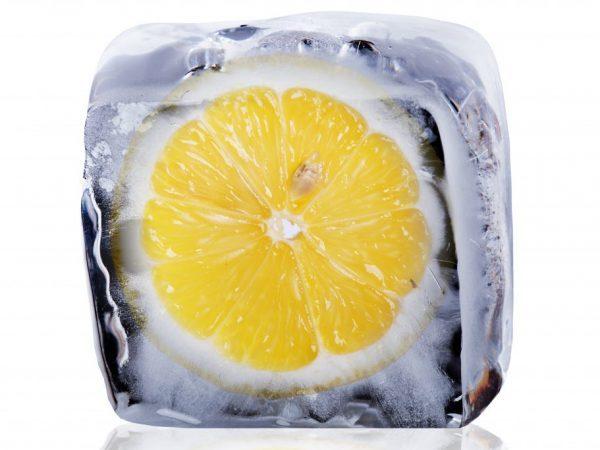 Замороженный лимон: польза и вред чудодейственного продукта, убивающего раковые клетки, а также как применить его свойства  и принимать фрукт во благо здоровью?