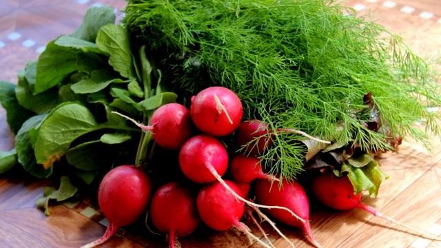 Калорийность редиса, его химический состав и польза для здоровья: сколько содержится ккал и БЖУ (включая углеводы) на 100 грамм и 1 шт, какие витамины есть в свежем?