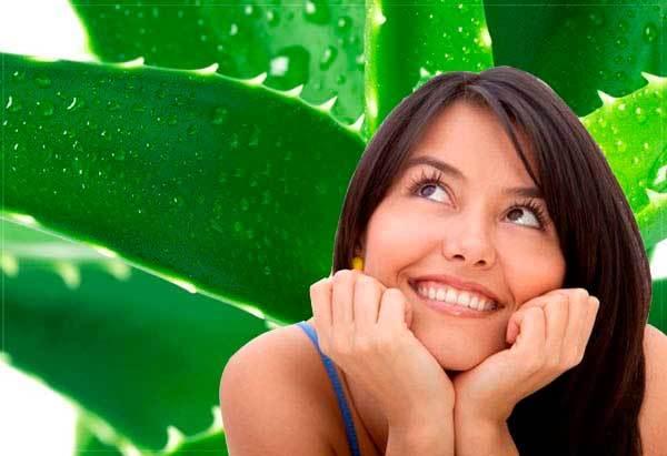 Алоэ для лица: рецепты в домашних условиях, правила приготовления масок, льда и других средств, в том числе для сухой кожи, лечения герпеса, от пигментных пятен