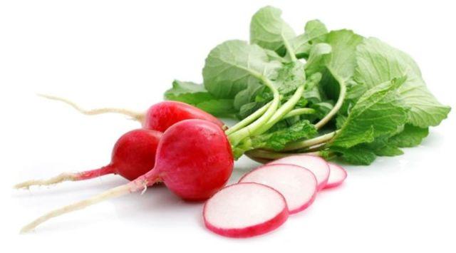 Редиска: польза для мужчин, вред для здоровья организма и какой состав овоща, в чем его полезные свойства, кому противопоказан, как употреблять?