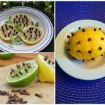Лимон и гвоздика от комаров: фото и рецепты народного средства, помогает ли оно в борьбе против насекомых, можно ли добавить корицу и каково воздействие на детей?