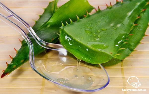 Напиток из Алоэ (aaloe): лечебные свойства и состав, рецепт изготовления в домашних условиях с кусочками листа, в чем польза растительного классического средства?