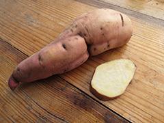 Сорта батата: описание и фото, разновидности сладкого картофеля - декоративного, кормового типа Тайнунг 65 и другие, почему важно правильно выбрать?