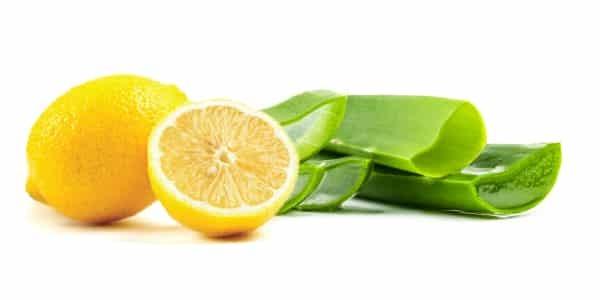 Алоэ для лица: чем помогает сок растения, как его применение влияет на кожу, на чем основано это действие и как использовать лечебные свойства столетника?