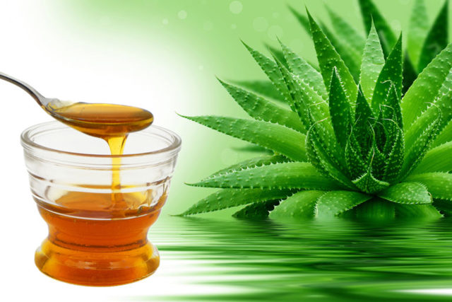 Алоэ и мед в гинекологии: показания для применения тампонов с соком растения, лечение эрозии шейки матки, для нормализации месячных, зачатия и при миоме