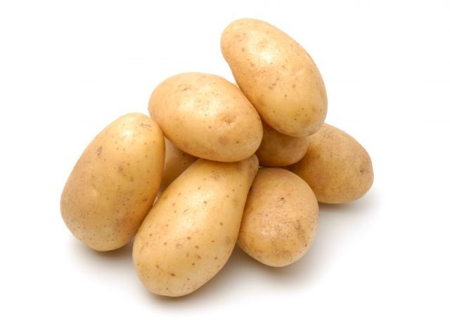 Как вырастить розу из черенков в домашних условиях в картошке: можно ли посадить в горшке, что нужно для того, чтобы укоренить цветок, каков дальнейший уход?