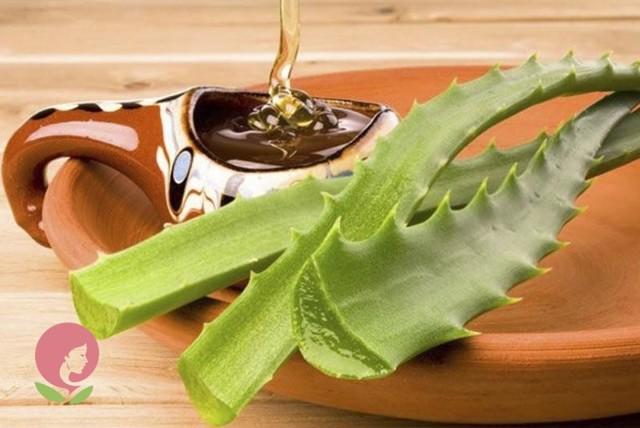 Алоэ от кашля для детей: рецепты на основе сока растения и меда от заболеваний дыхательных путей, в том числе при насморке, правила приема и противопоказания