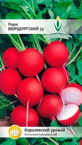 Редис Рудольф f1: описание и характеристика, основные особенности, преимущества, недостатки, правила выращивания, урожайность, похожие сорта