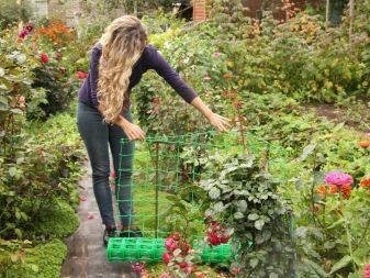 Опора для плетистых роз: фото и пошаговые инструкции, как сделать шпалеру, башню, арку, вигвам и другие конструкции своими руками, а также подвязать к ним растение