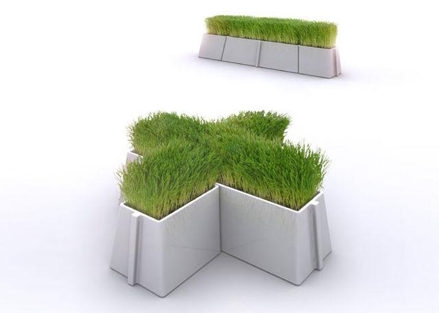 Как спасти залитый цикламен: что следует делать в данном случае, какие меры необходимо предпринять, если вы чрезмерно переувлажнили растение?