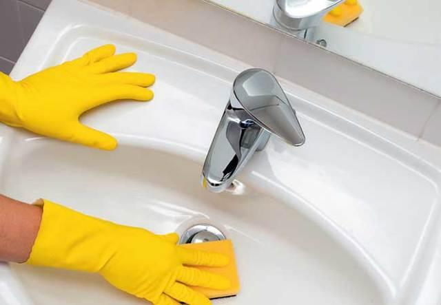 Мокрицы в ванной комнате, туалете: фото, а также как избавиться от них народными средствами, вывести с помощью дезинсекции, по-иному бороться с домашними рачками?