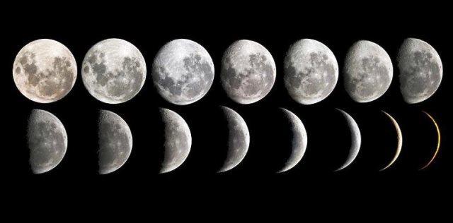 Посев редиса в апреле в открытый грунт: можно ли сажать и как лучше это делать, когда благоприятные дни для посадки по лунному календарю, в каких числах?