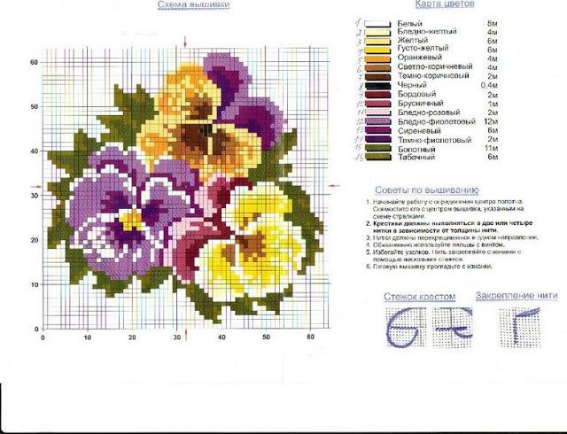 Анютины глазки: фото многолетнего цветка, лечебные свойства и описание трехцветной фиалки, какие есть сорта, легенда растения и что оно символизирует
