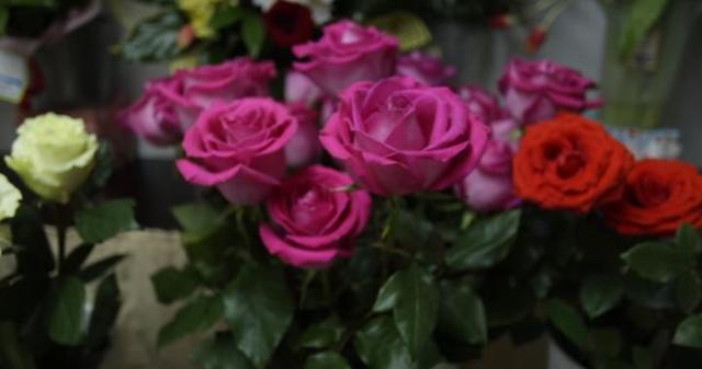Как выбрать розы: как правильно определить при покупке свежие цветы или нет, каким образом сохранить их первоначальный вид в дальнейшем?