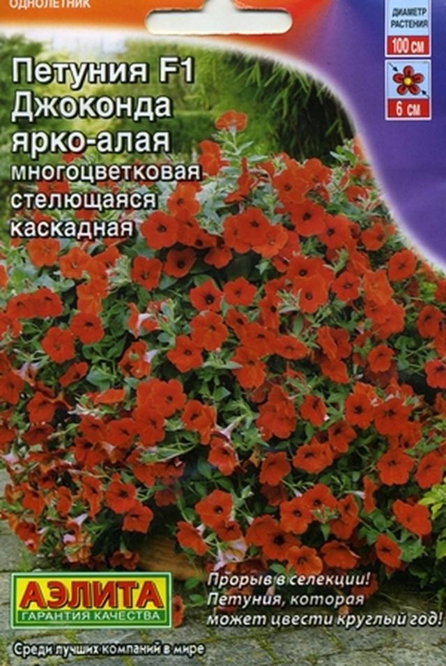 Петуния Джоконда: виды (оранжевая, алая, мини и другие) и их фото, уход за растением, болезни и проблемы