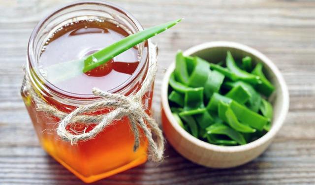 Как хранить листья алоэ впрок: можно ли заморозить срезанное растение, поместить в холодильник или законсервировать в домашних условиях, сколько они могут лежать?