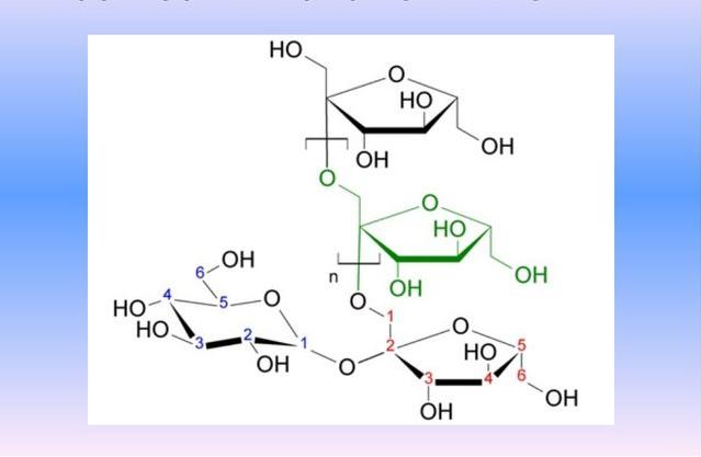 Топинамбур при сахарном диабете: как употреблять при 1 и 2 типе, а также гликемический индекс и свойства земляной груши, ее польза и вред, рецепты приготовления