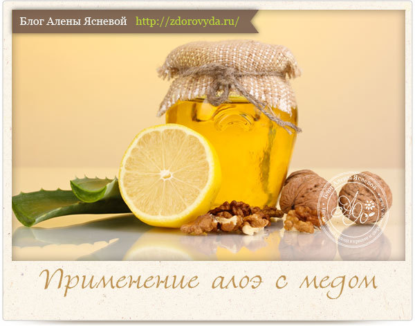 Маска для лица с алоэ и медом: лечебные свойства компонентов, имеющиеся у них противопоказания, а также лучшие рецепты